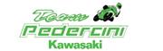 Logo_TeamPedercini2