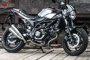 Anima ed estetica da Special per la nuova Suzuki SV650X-TER